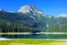 Photo of Экскурсия «Каньоны» в Черногории