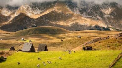 Photo of Двухдневная экскурсия на север Черногории